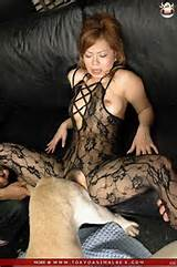 milf porn videos animals